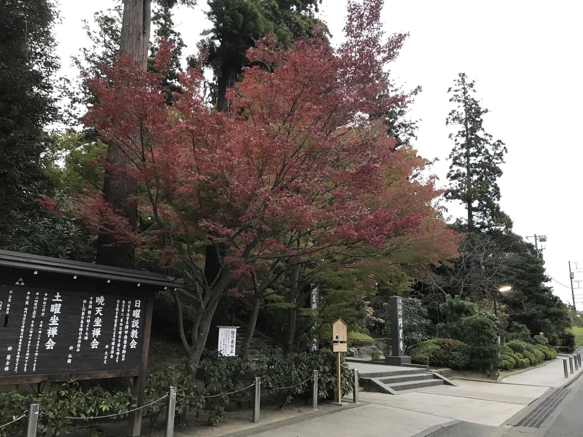 鎌倉紅葉円覚寺20191122-1