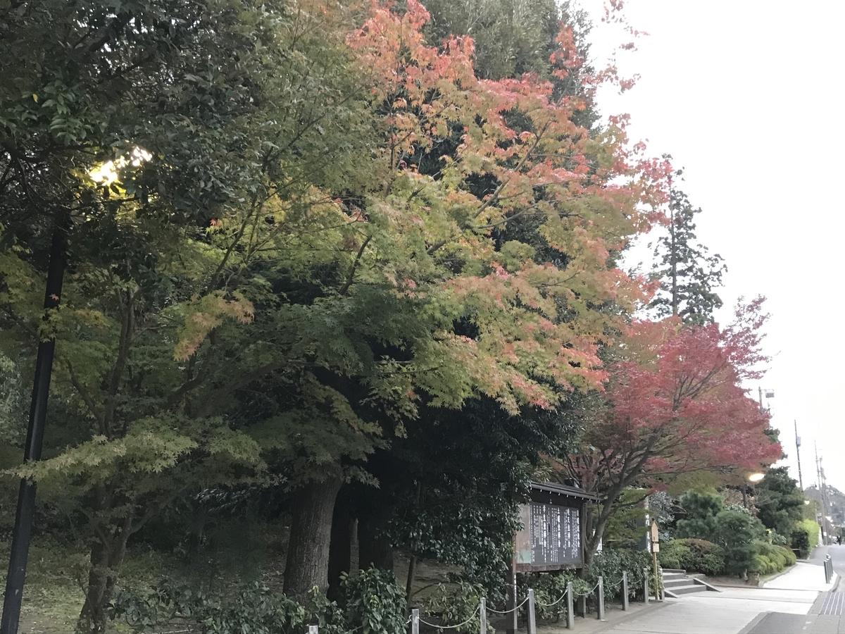鎌倉紅葉円覚寺20191122-2