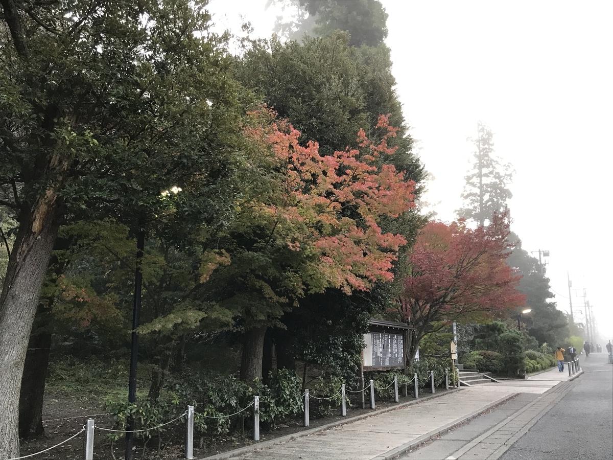 鎌倉紅葉円覚寺20191125-1