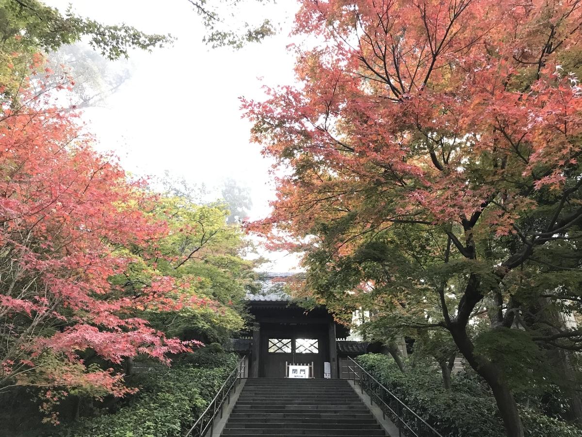 鎌倉紅葉円覚寺20191125-4