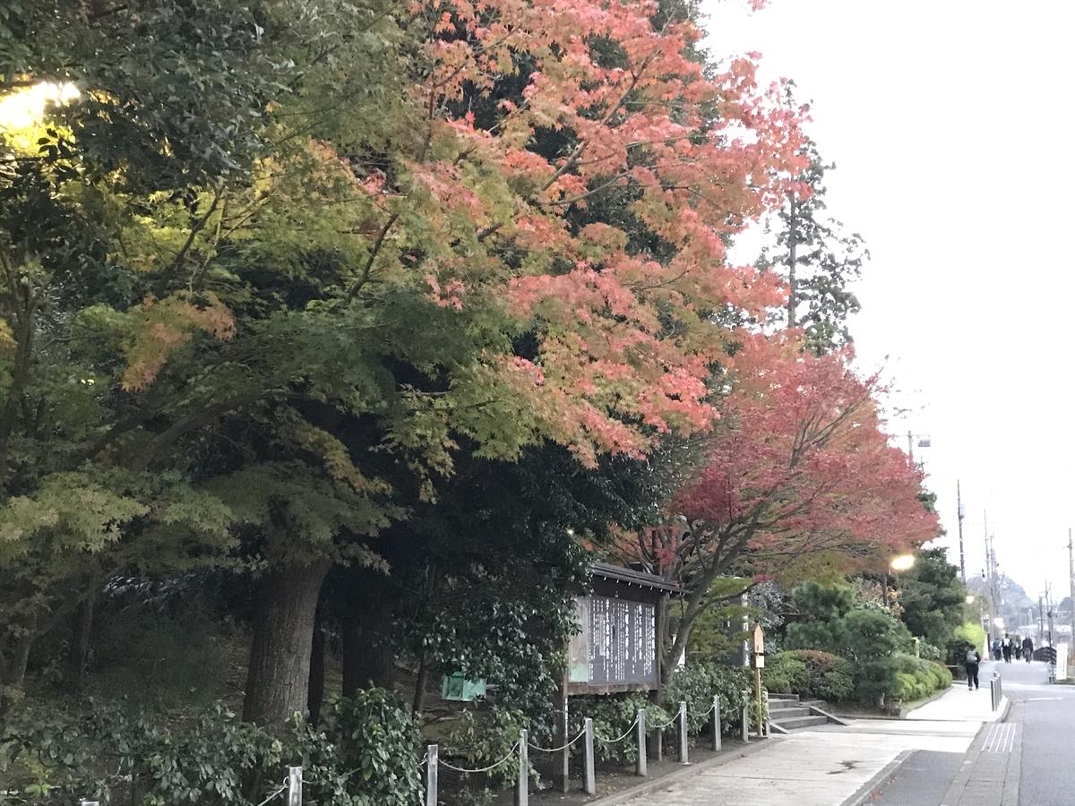 鎌倉紅葉円覚寺20191126-1