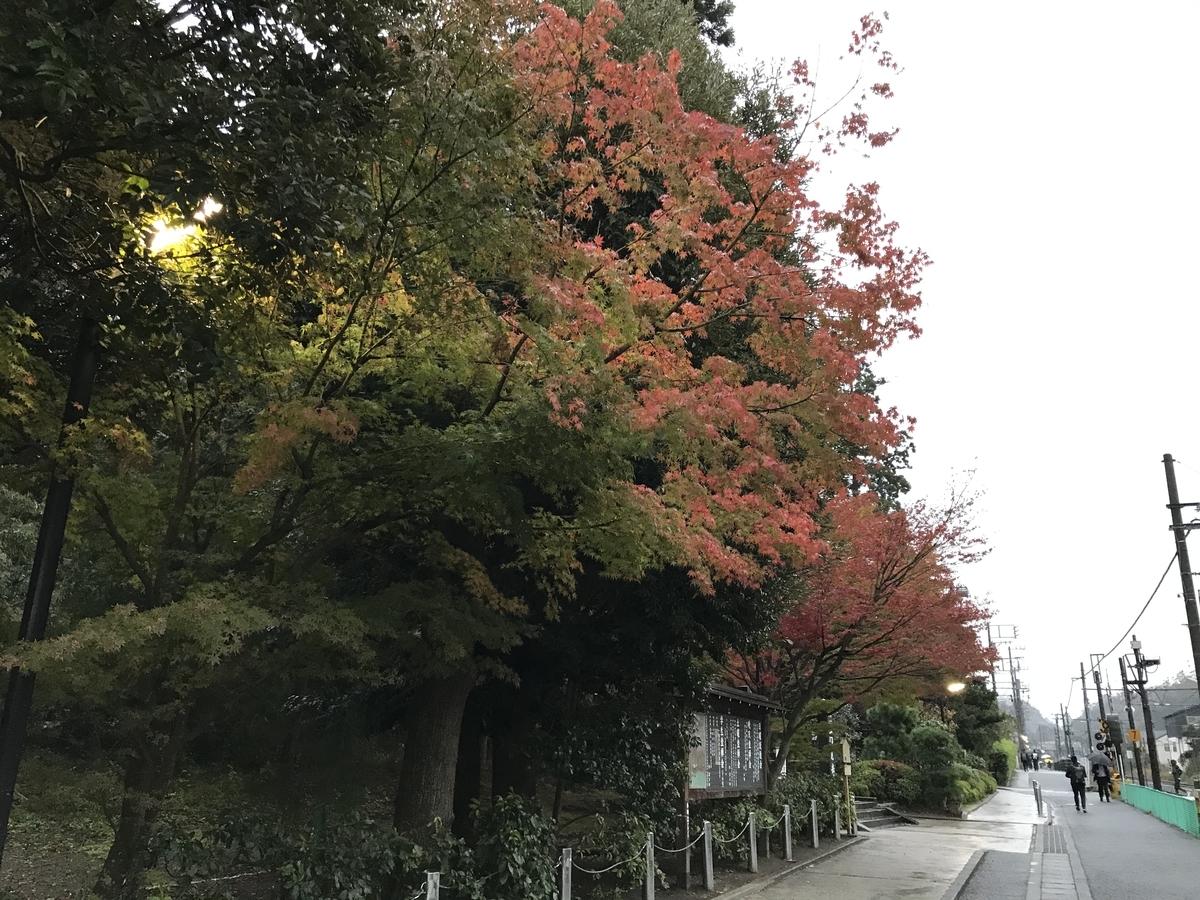 鎌倉紅葉円覚寺20191127-1