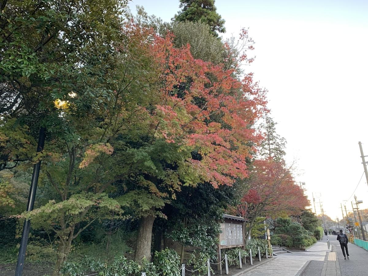 鎌倉紅葉円覚寺20191129-1