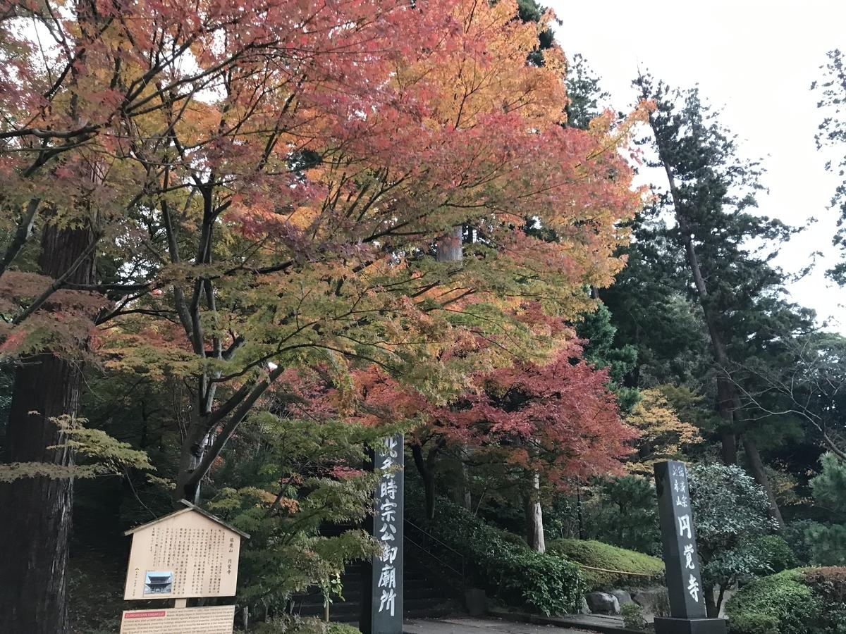 鎌倉紅葉円覚寺20191202-1