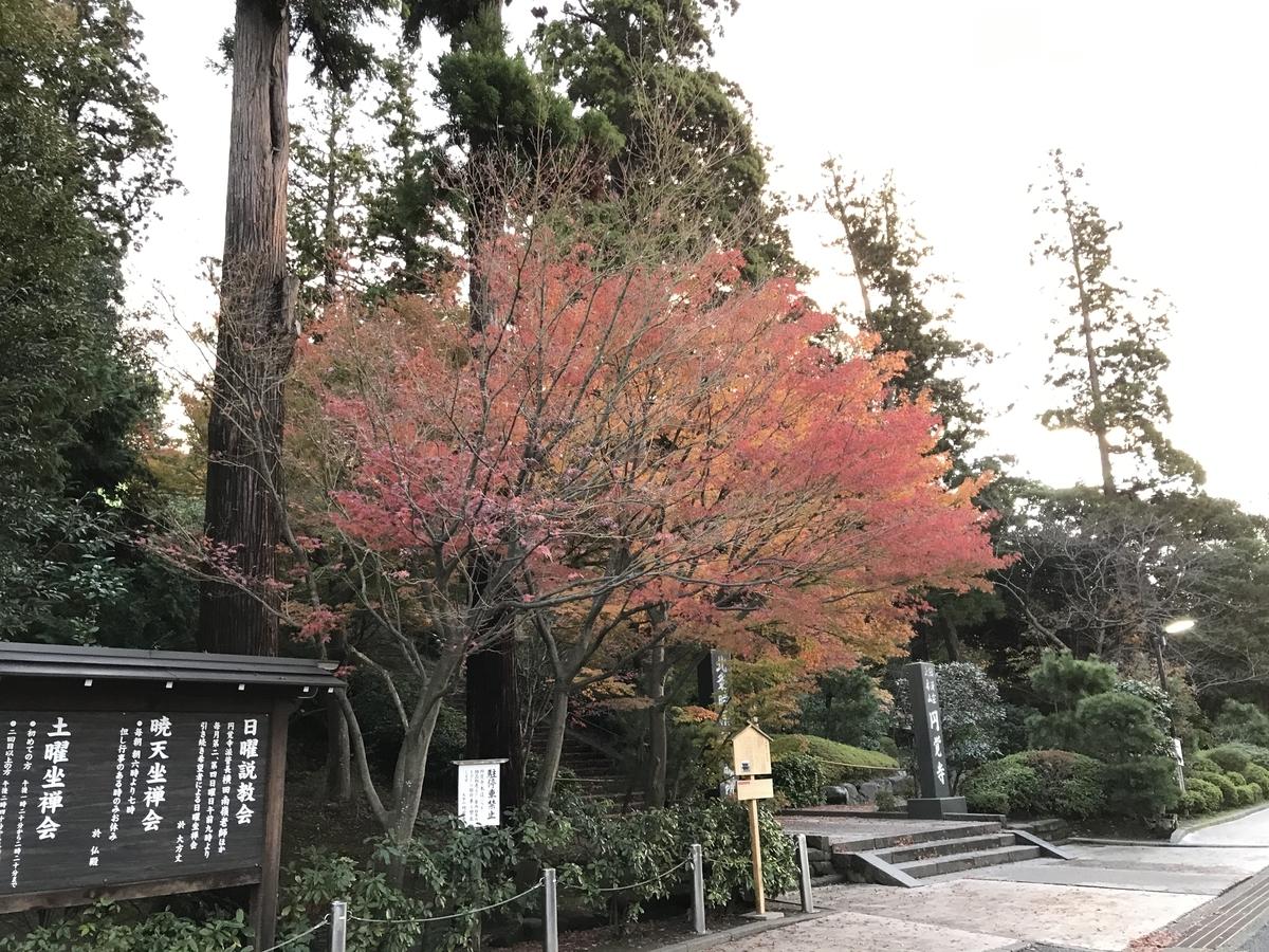 鎌倉紅葉円覚寺20191203-1