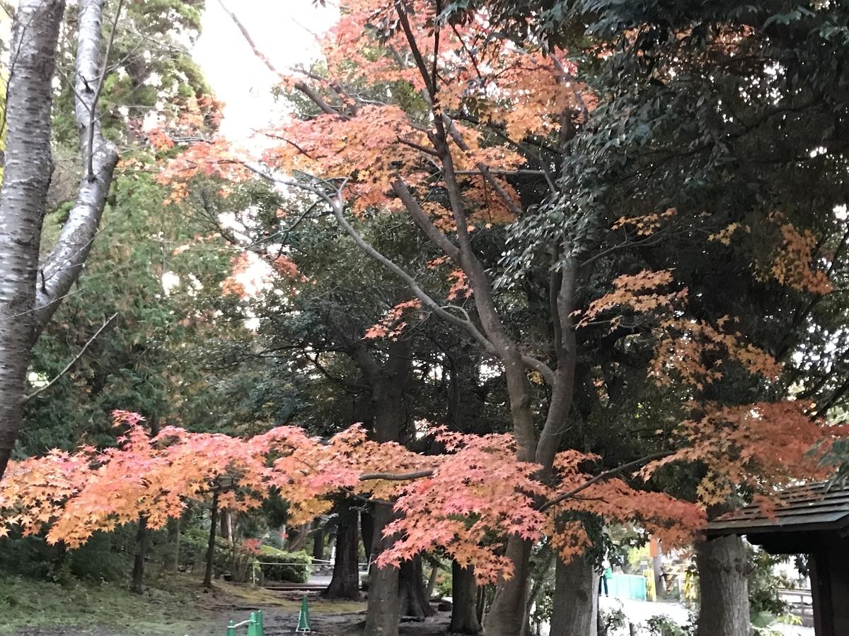 鎌倉紅葉円覚寺20191203-2