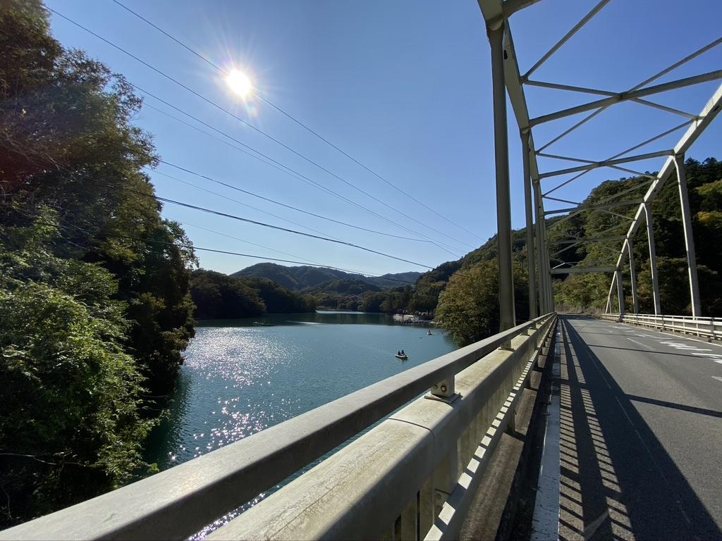 橋から相模湖を臨む風景