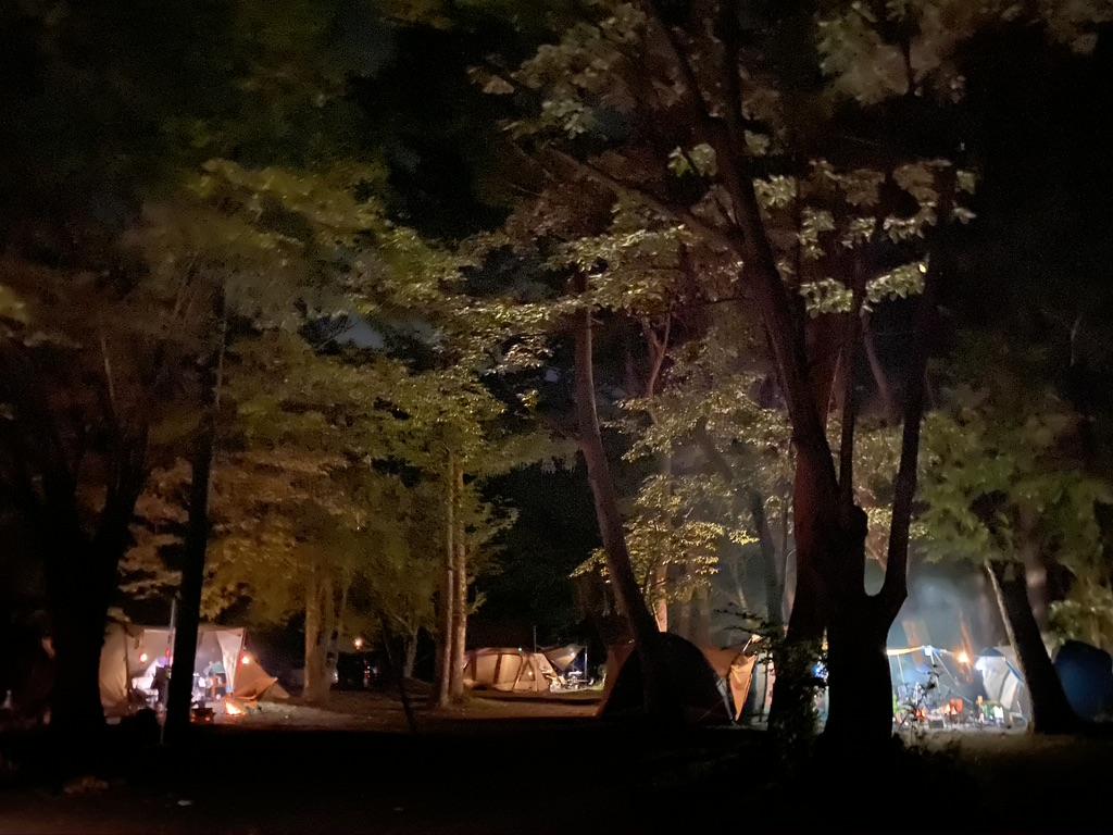 林間サイトの様子・夜