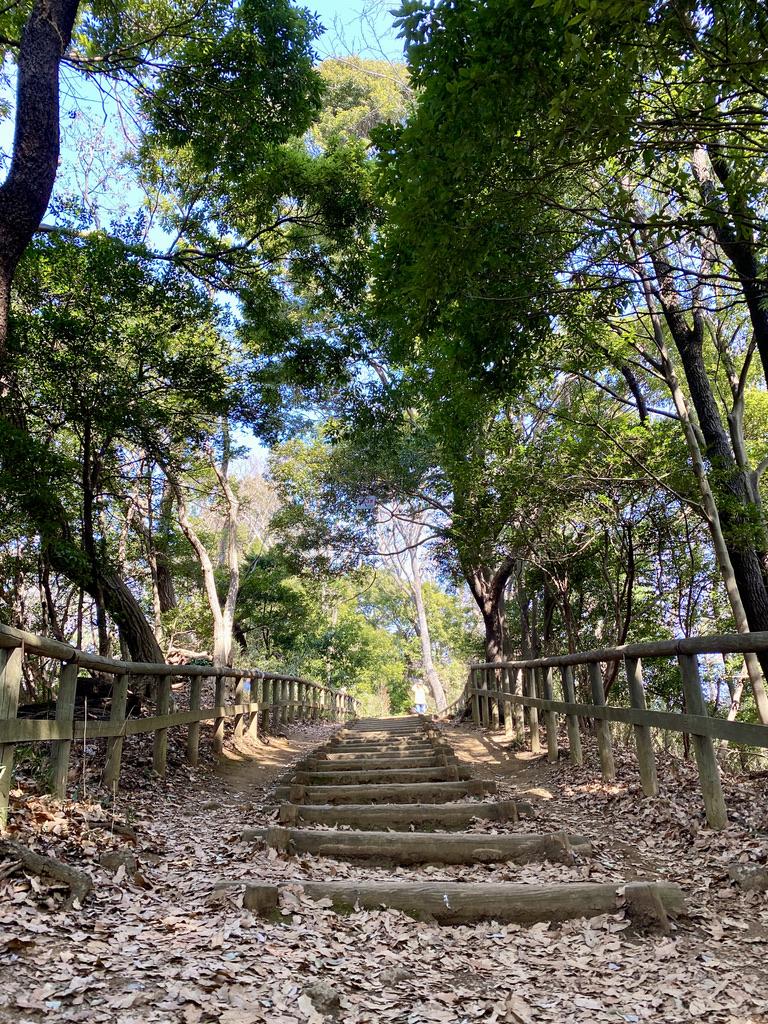 飯室山から枡形山へのルートは下りもある(写真は下った先から撮ったもの)