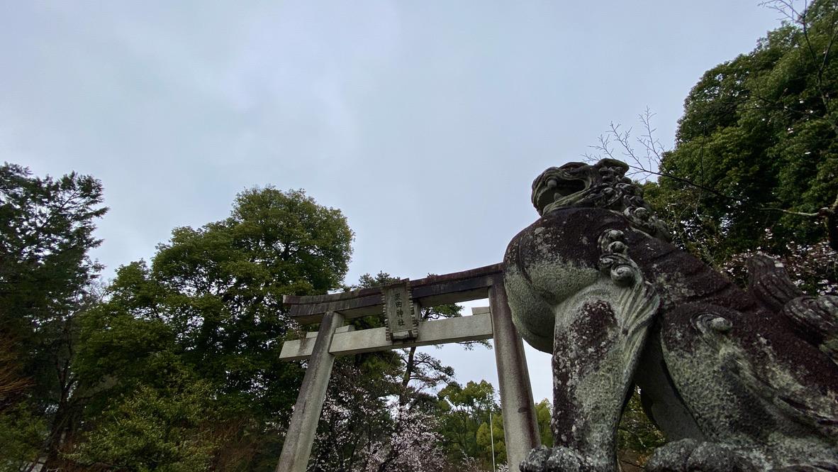 力強い狛犬様に守られている鳥居