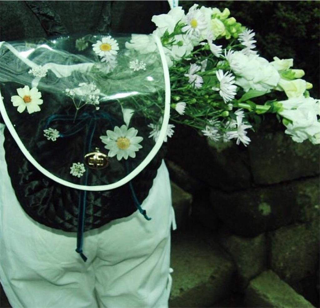 f:id:ritsuko0627:20170913221207j:image