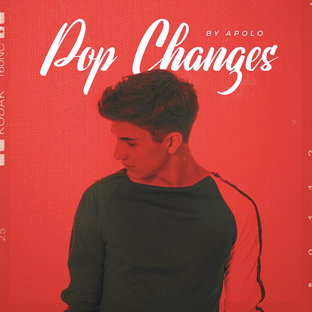 DIGINOIZの「POP CHANGES BY APOLO」