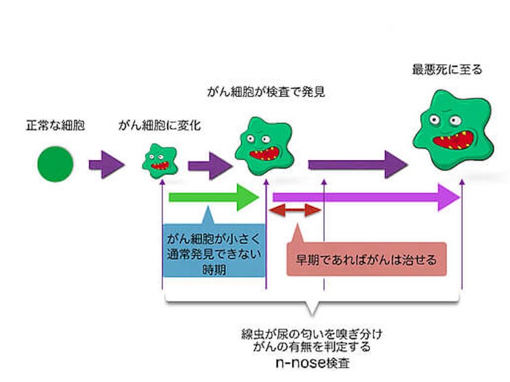 f:id:riumachimama:20170425132227j:image
