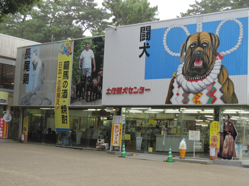 闘犬センター