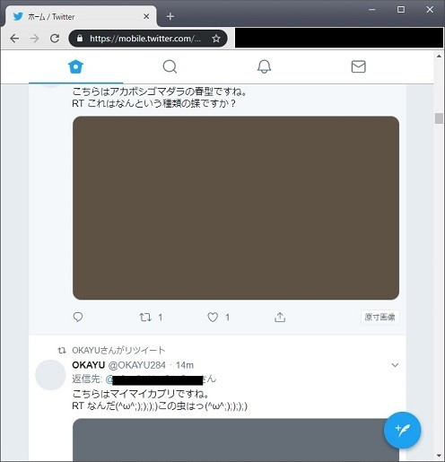 f:id:rizenback000:20190519204121j:plain