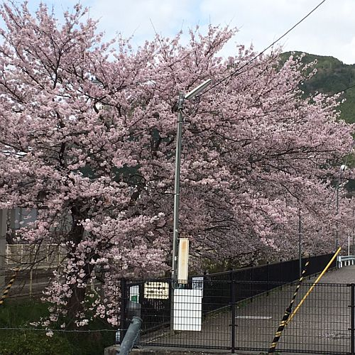 f:id:rjmatsumura:20170412225524j:plain