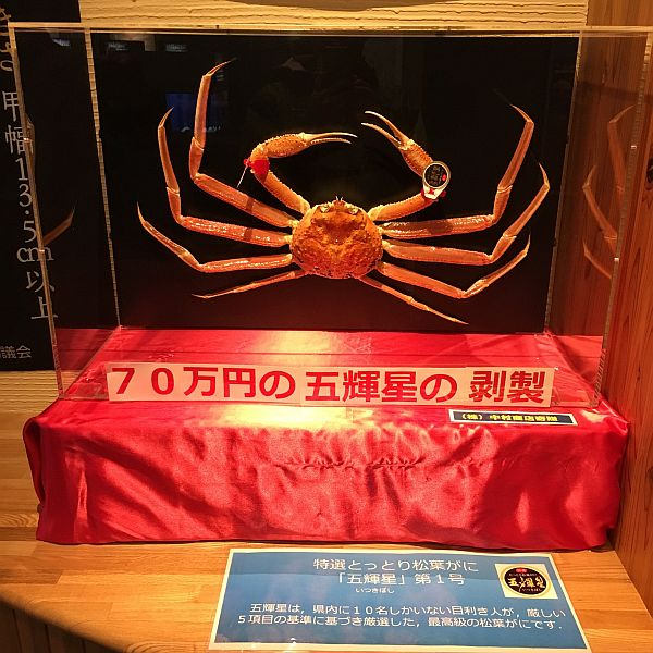 f:id:rjmatsumura:20180510230128j:plain