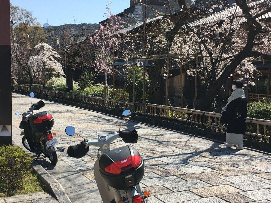 f:id:rjmatsumura:20200327152155j:plain