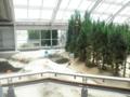 野島断層 3