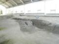 野島断層 5