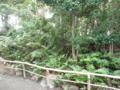 原田城 3