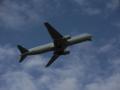 全日本空輸ボーイング767モヒカン塗装@大阪国際空港