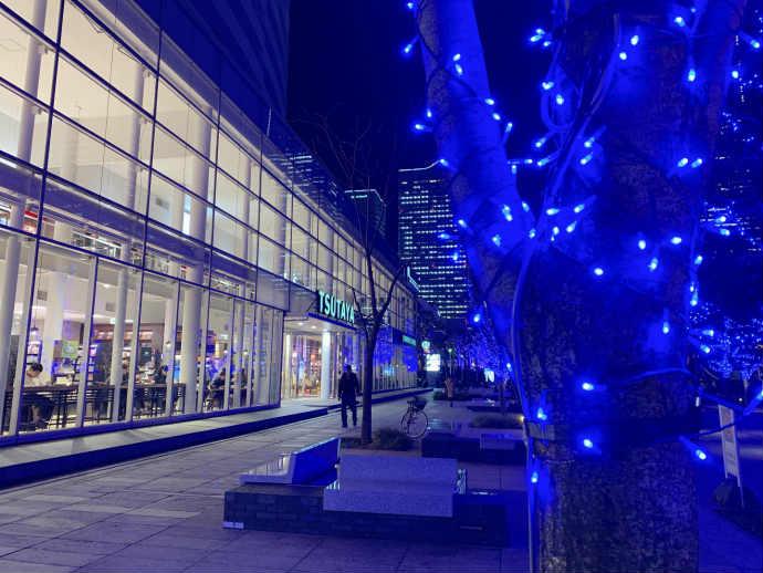 スタバ TSUTAYA 横浜みなとみらい店 夜 ライトアップ