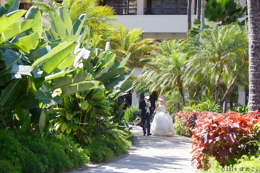 ヒルトンハワイアンビレッジ ガーデン写真