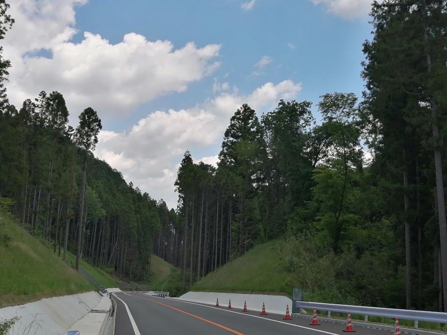 f:id:road-suzu:20210531182043j:plain