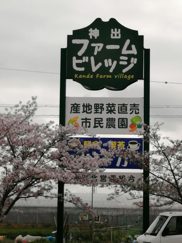 f:id:road-suzu:20210531200456j:plain