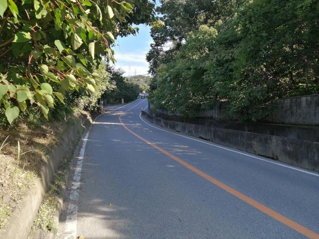 f:id:road-suzu:20210718102916j:plain