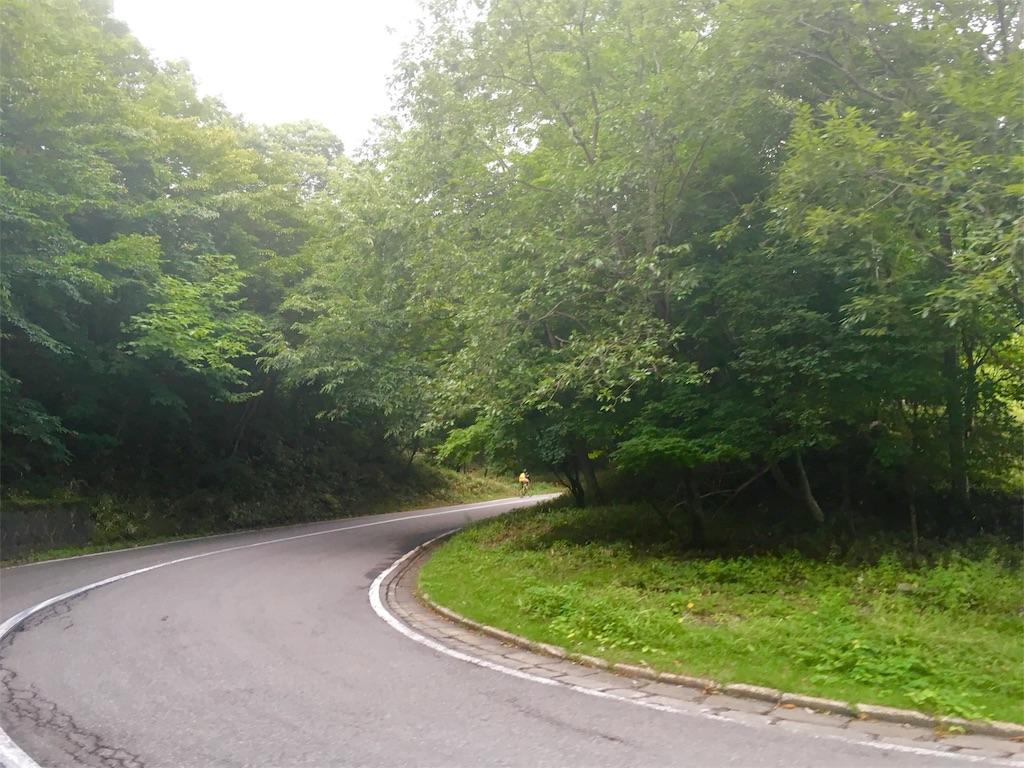 f:id:road_mushi:20160813114835j:image