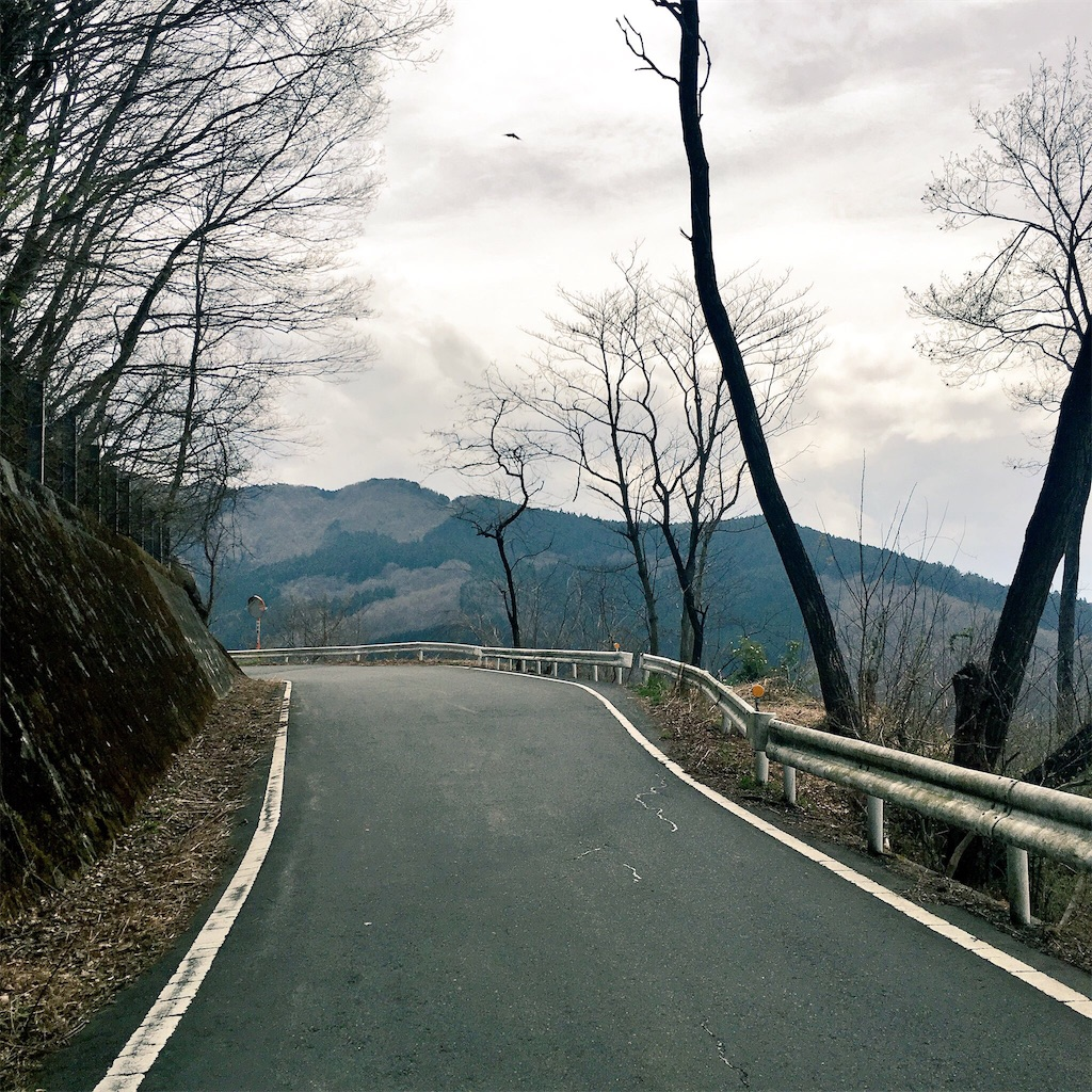 f:id:road_mushi:20161116202453j:image