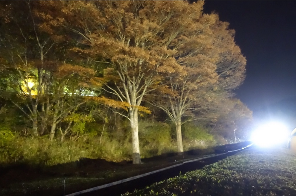 f:id:road_mushi:20161202091951j:image