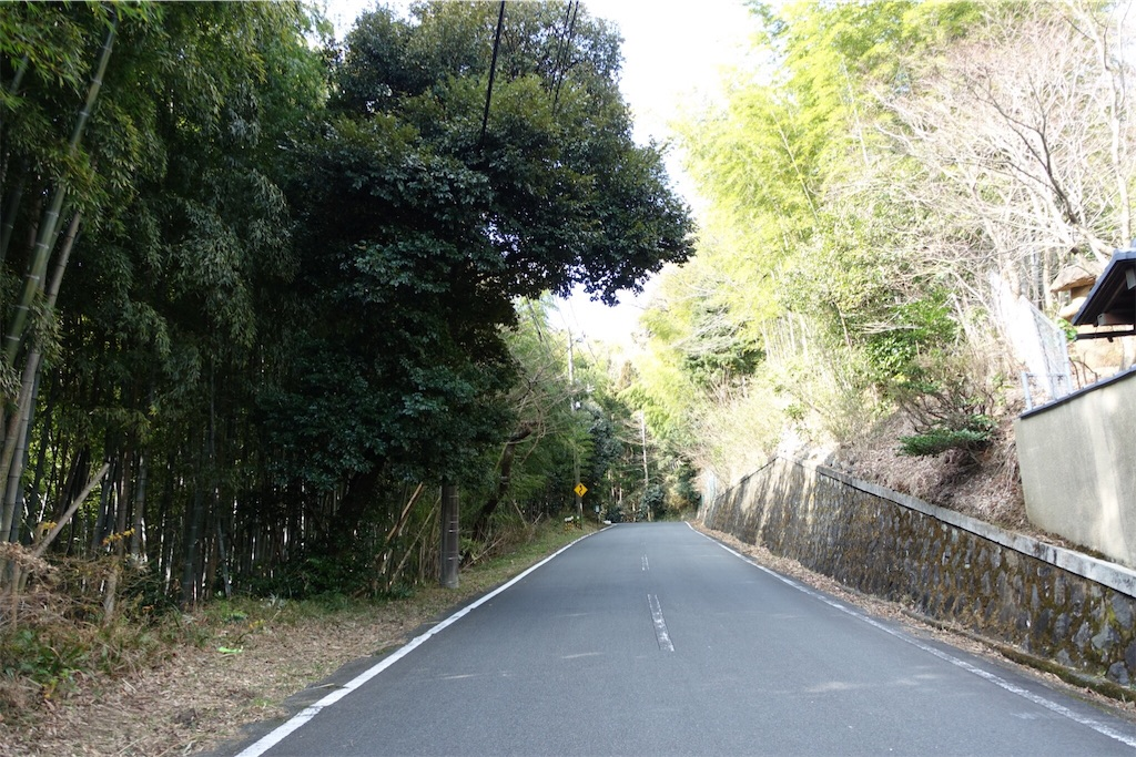 f:id:road_mushi:20170130175047j:image