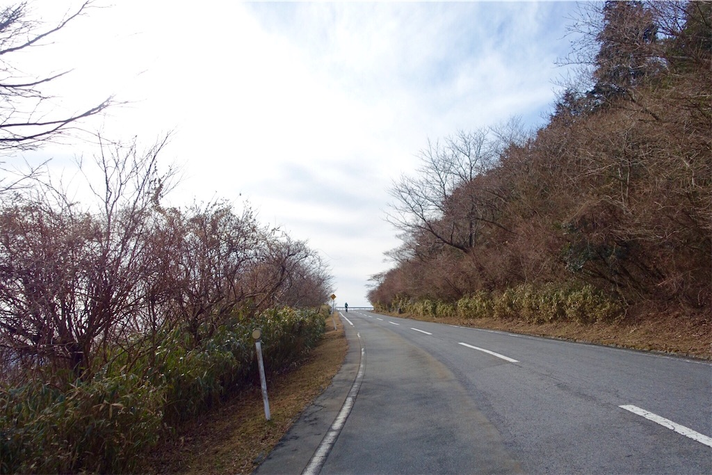 f:id:road_mushi:20170130185916j:image