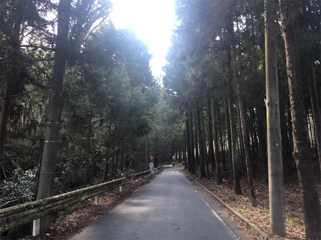 f:id:road_mushi:20170220164253j:image