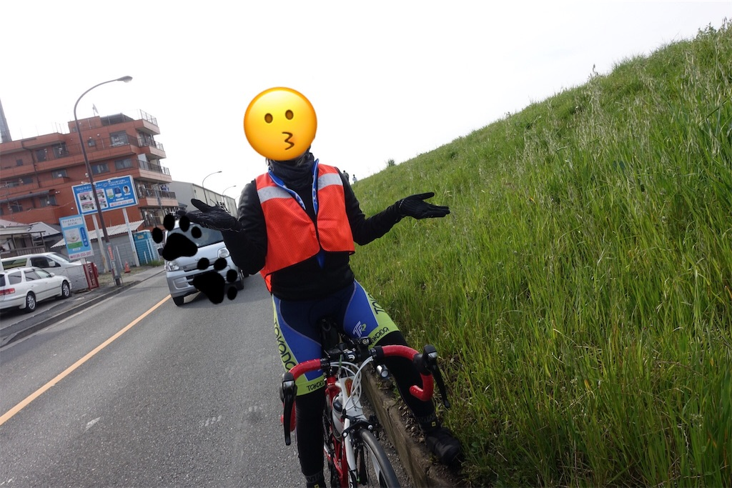 f:id:road_mushi:20170404234013j:image