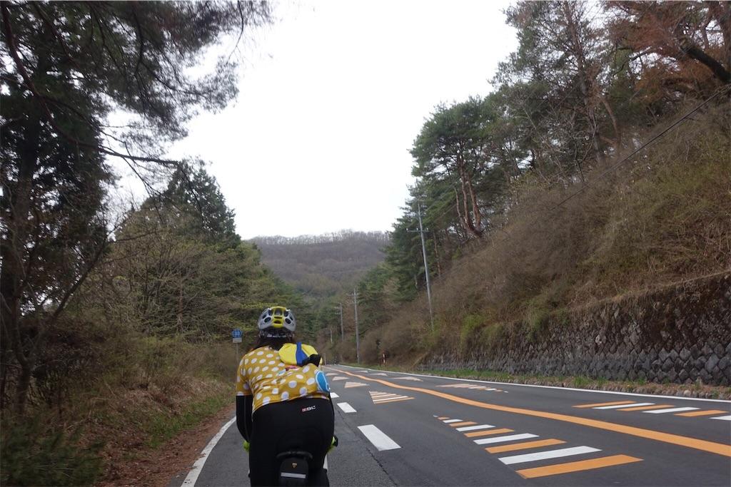 f:id:road_mushi:20170504061351j:image