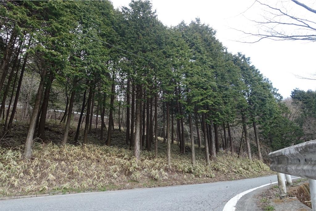 f:id:road_mushi:20170508092923j:image