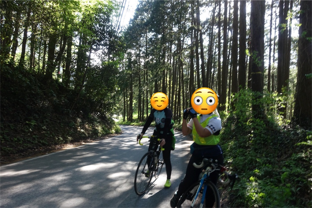f:id:road_mushi:20170517090944j:image