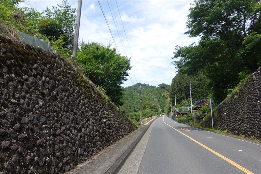 f:id:road_mushi:20170609192512j:image