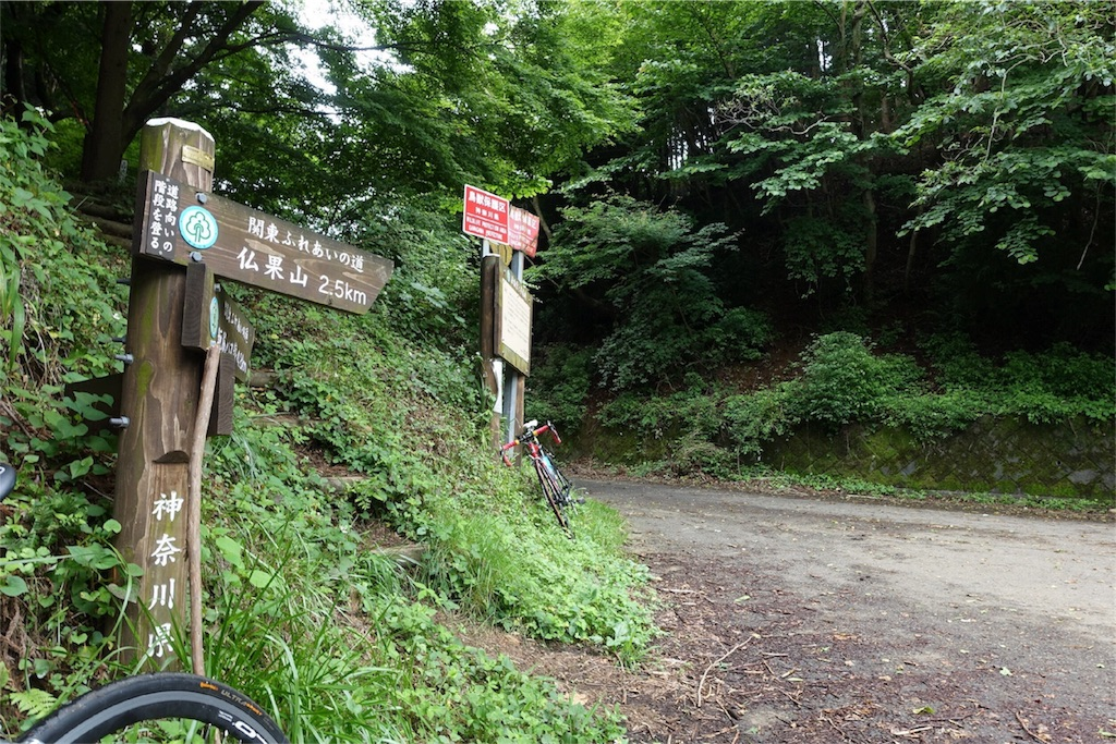 f:id:road_mushi:20170708050428j:image