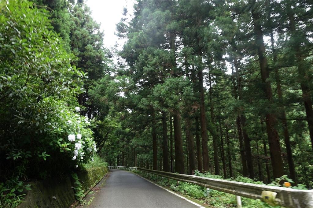 f:id:road_mushi:20170708050802j:image