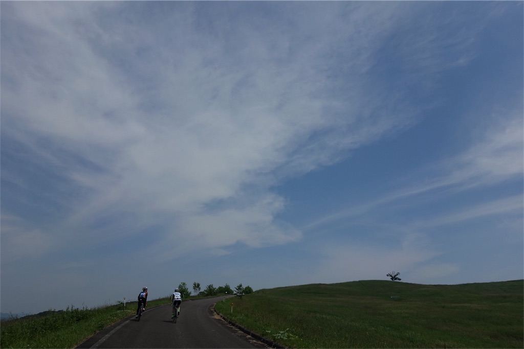 f:id:road_mushi:20170723180943j:image