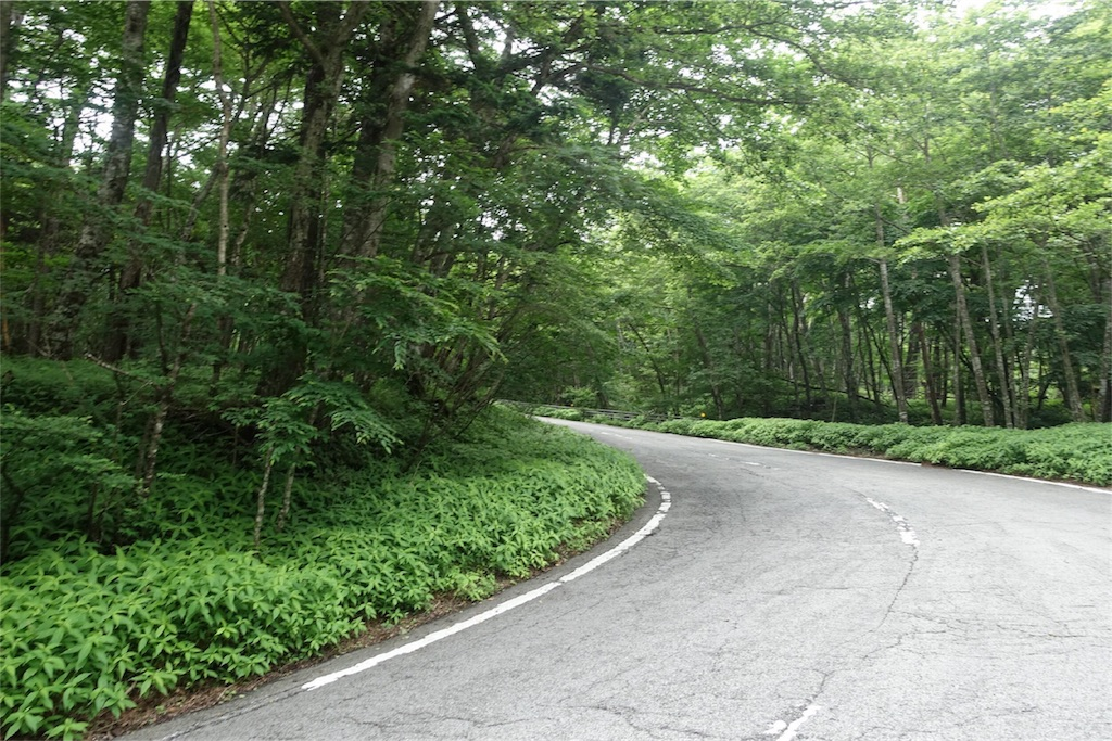 f:id:road_mushi:20170803222138j:image
