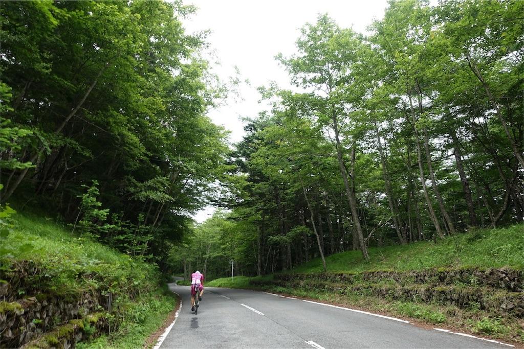 f:id:road_mushi:20170803222307j:image