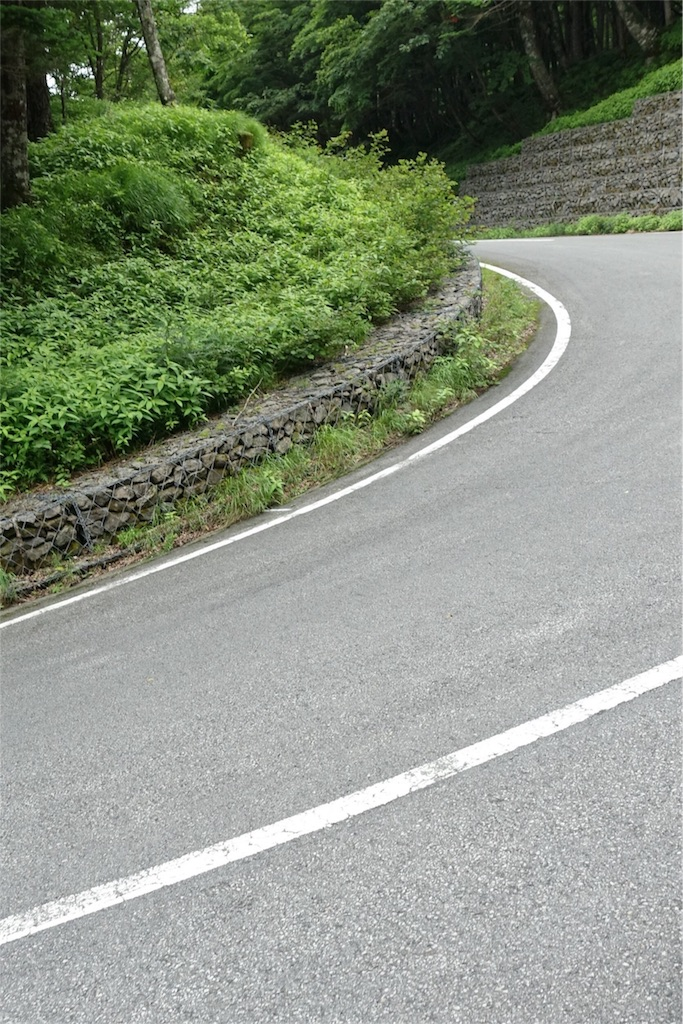 f:id:road_mushi:20170803222543j:image