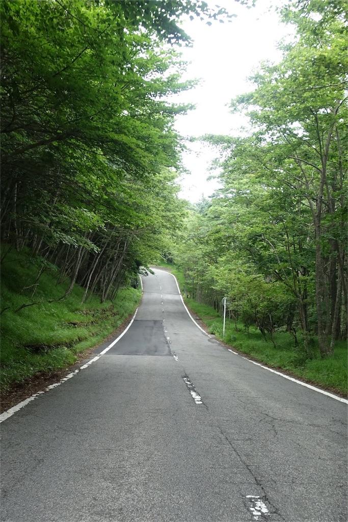 f:id:road_mushi:20170803223107j:image