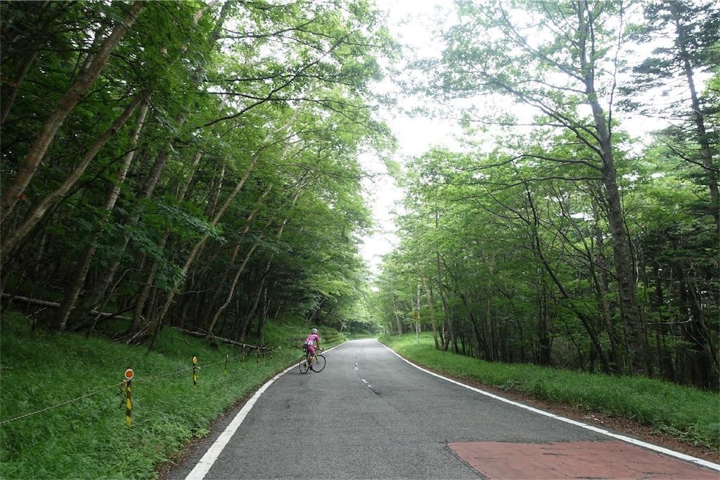 f:id:road_mushi:20170803223436j:image